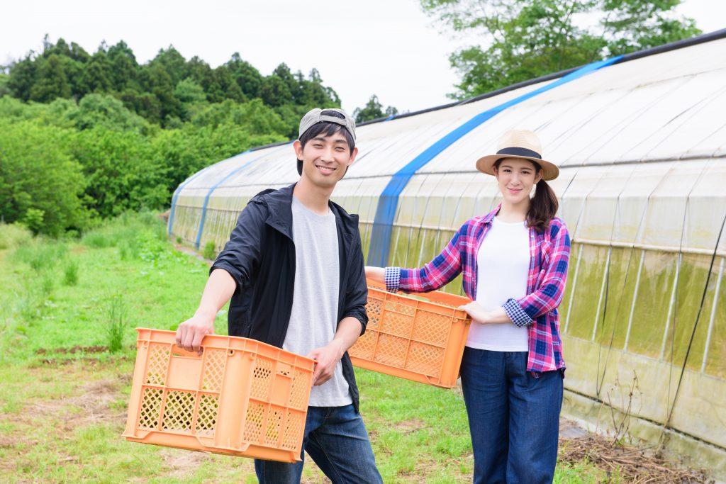 農産物の配達なら名古屋のアグリカーゴ